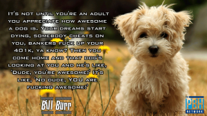 bill-burr-quote-on-dogs